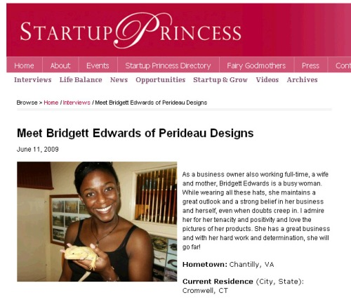 startup princes interview 2
